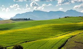 Image result for landscapes