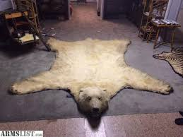 bear rug for first off the polar bear rug is 100 authentic and even though bear rug