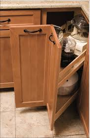 Blind Corner Cabinet Pull Out Shelves Corner Cabinet Organizers Pull Out Home Design Ideas And Pictures 91