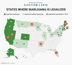obama on weed legalization business insider bi graphics marijuana map 1