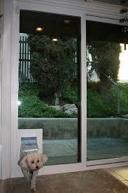 attractive patio door dog sliding gl