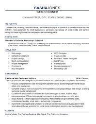 Web Design Resume Example