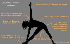 Muskatellersalbei - Ätherisches Öl und Anwendung
