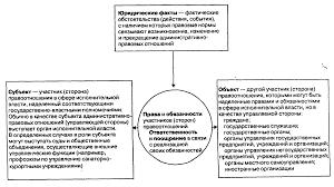 Курсовая работа Административно правовые отношения Государство  Виды административно правовых отношений курсовая работа