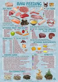 Epi4dogs Diet Raw Home Prepared Recipes Managing Epi