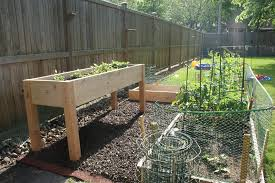 garden design with how to build a raised bed