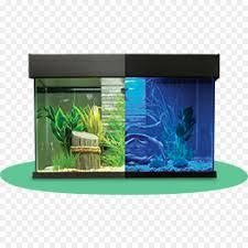 furniture fish tanks. Aquariums Siamese Fighting Fish Aquarium Furniture Filtration - Tank Tanks