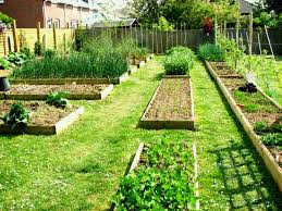 vegetable garden layout ideas plan beginners top and design raised bed gardening for idea