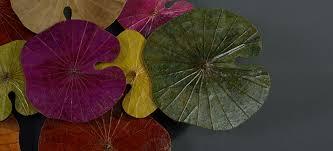 Арт объект disc wall art lotus leaves ii loft concept купить