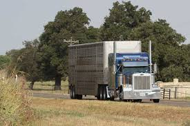 DOT answers questions on ELD mandate - Texas Farm Bureau