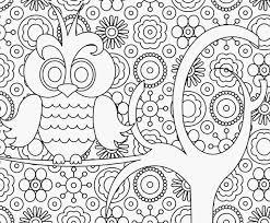 Kleurplaten Bloemen Voor Volwassenen Afbeelding 3 Tekeningen Kerst