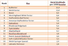 Cairn Terrier Growth Chart Agazzis