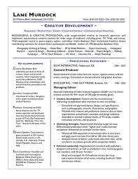 San Diego Resume Enchanting San Diego Resume Services Unique It Resume Writing Services It