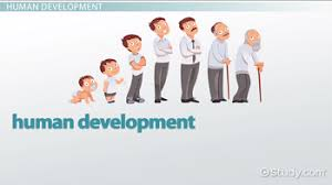 Child Developmental Stages And Growth Chart Human Development Stages From Infancy To Late Adulthood