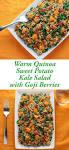 delicious healthy goji berry recipes