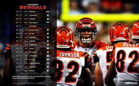 cincinnati bengals wallpaper 15 1920 x 1200