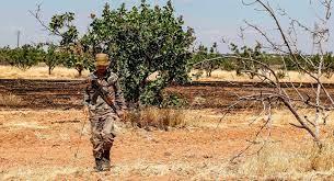 سوريا - Carnegie Endowment for International Peace