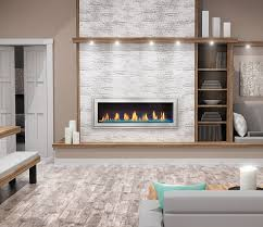 napoleon vector lv50n2 see thru direct vent linear gas fireplace