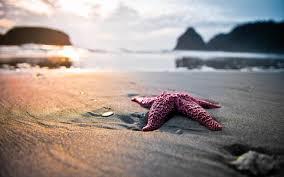 summer beach tumblr. Tumblr Summer Beach 2560x1600