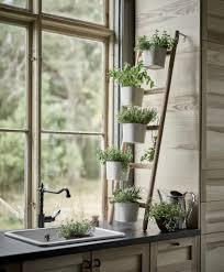 indoor plant stands