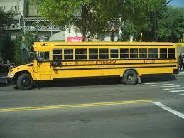 Blue Bird Vision School Bus School Bus Nice Bus Busses School
