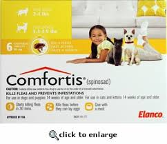 comfortis for dogs. Perfect Comfortis To Comfortis For Dogs