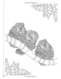 Small Picture 130 best adult coloring pages images on Pinterest Coloring books