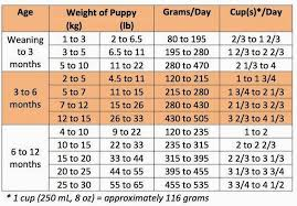 How Much To Feed A Puppy Chart Puppy Feeding Guide Puppy Feeding Guide Feeding Puppy