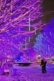 7 Best Places To See Christmas Light Displays In The