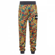Спортивные <b>брюки THE NORTH FACE</b> M FINE PANT SS19 купить ...