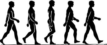 Vector image of steps of a walking human | Public domain vectors