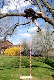 Tree Swing Easy Diy Tree Swing