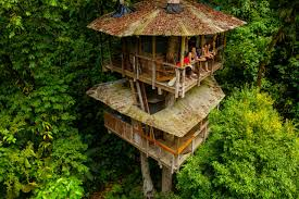Tree House Photos Is The Treehouse The Pinnacle Of Sustainable Living Cnn Style