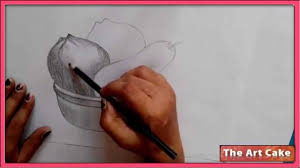 fruit bowl drawing with shading. Modren Drawing FRUIT BOWL Pencil Sketch How To Draw Fruit Bowl  Still Life In  YouTube Inside Drawing With Shading
