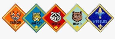 Image result for cub scout images