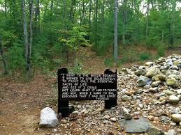 Thoreau Walden Quotes Amazing Thoreau Quote Picture Of Walden Pond State Reservation Concord