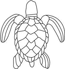 Small Picture Best 25 Sea turtle art ideas on Pinterest Turtle painting Sea