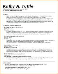 Resume Profile Examples College Students For Example It Summary