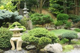 Japanese Garden Plants Small Japanese Garden Transforms This Backyard Watch