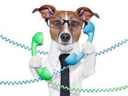 Image result for sales calls