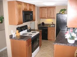 Small Space Kitchen Appliances Kitchen Kitchen Color Ideas With Oak Cabinets And Black