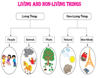 Venn Diagram Living And Nonliving Things Living And Non Living Things Worksheets