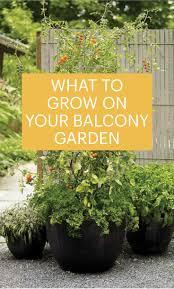 Balcony Garden The 25 Best Balcony Garden Ideas On Pinterest Small Balcony