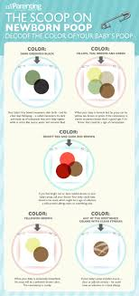 Newborn Stool Color Chart Newborn Poop Infographic Decoding The Color Preggers