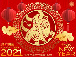 Happy chinese new year 2021 with gold head ox zodiac sign on red chinese culture texture background vector design. Weewbmyrem1som