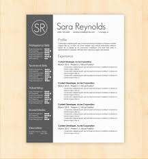 Resume Template On Word New It Cv Template Word Matchboard Resume