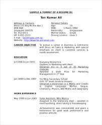 Sample Format Merchandiser Resume