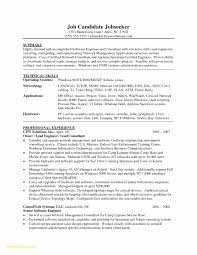 Software Engineer Resume Template Word Download Now 13 Inspirational