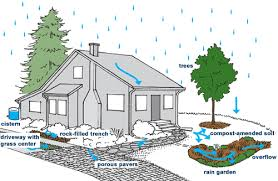 Small Picture RainWise Program Seattle Public Utilities