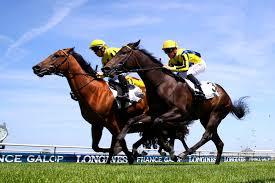 Jockey - Métier du cheval et des courses - Formations AFASEC